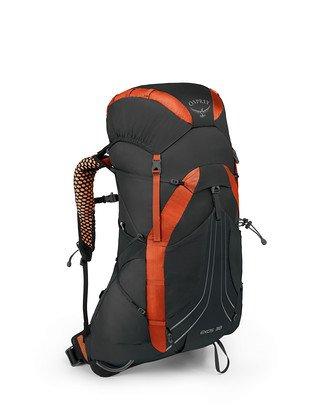 762d16d4d558 TALON™ 33 - Osprey Packs Official Site