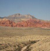 beautiful view of the desert