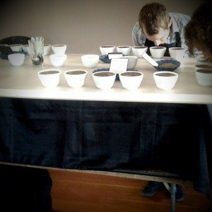 Aroma Testing for Coffee Cupping