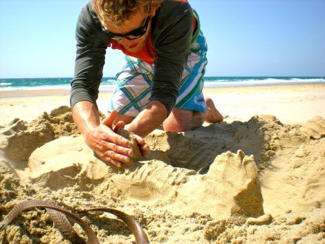What better way to stay inspired by the ocean, than to build sea creatures in the sand?