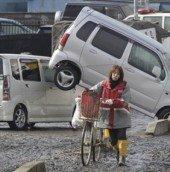 bicycle freedom tsunami_1_t607