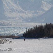 Cycling at 150 feet elevation up the Knik River into the Central Chugach Mountains. The Knik Glacier flows forty miles from the 13,176-foot summit of Mount Marcus Baker.