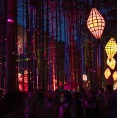 13_ElectricForest_Osprey_21-SherwoodForest