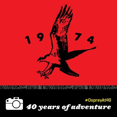 40thVintageBird-Adventure