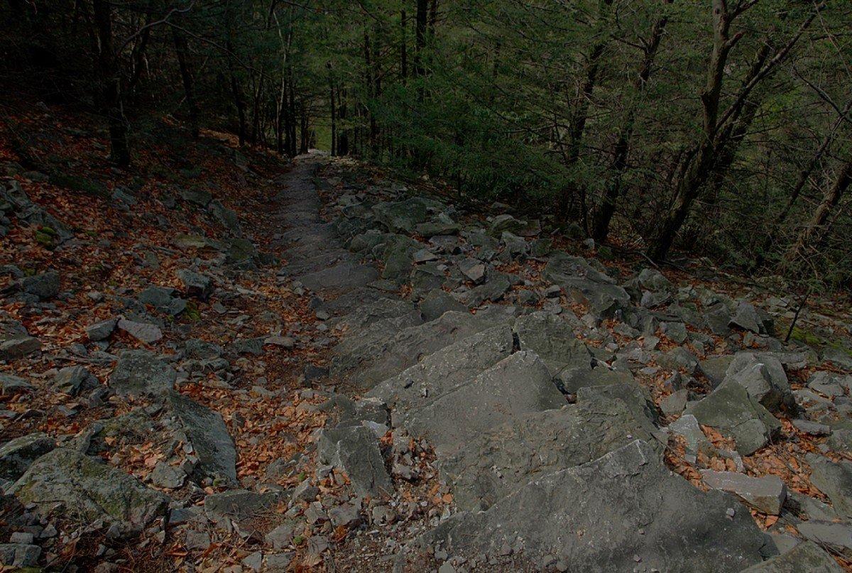 1,000 Steps Trail. Image via Mike Smallwood