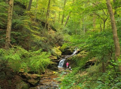 Mason Dixon Trail System. Image via Nicholas Tonelli