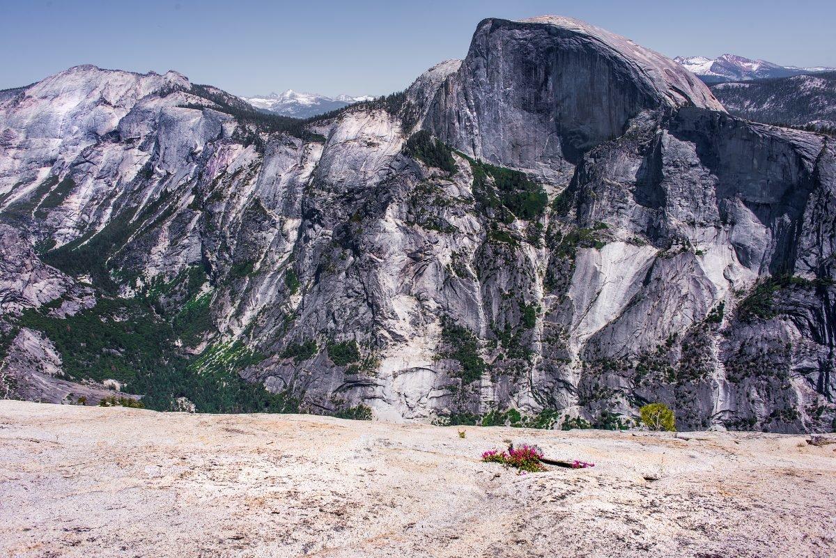 North Dome Yosemite. Image via Nick Mealey