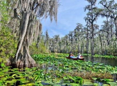 Florida_Okefenokee Swamp Paddle. Image via US Fish and Wildlife Service
