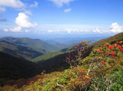 North_Carolina Craggy Gardens Blue Ridge Mountains- Image via Selena N. B. H.