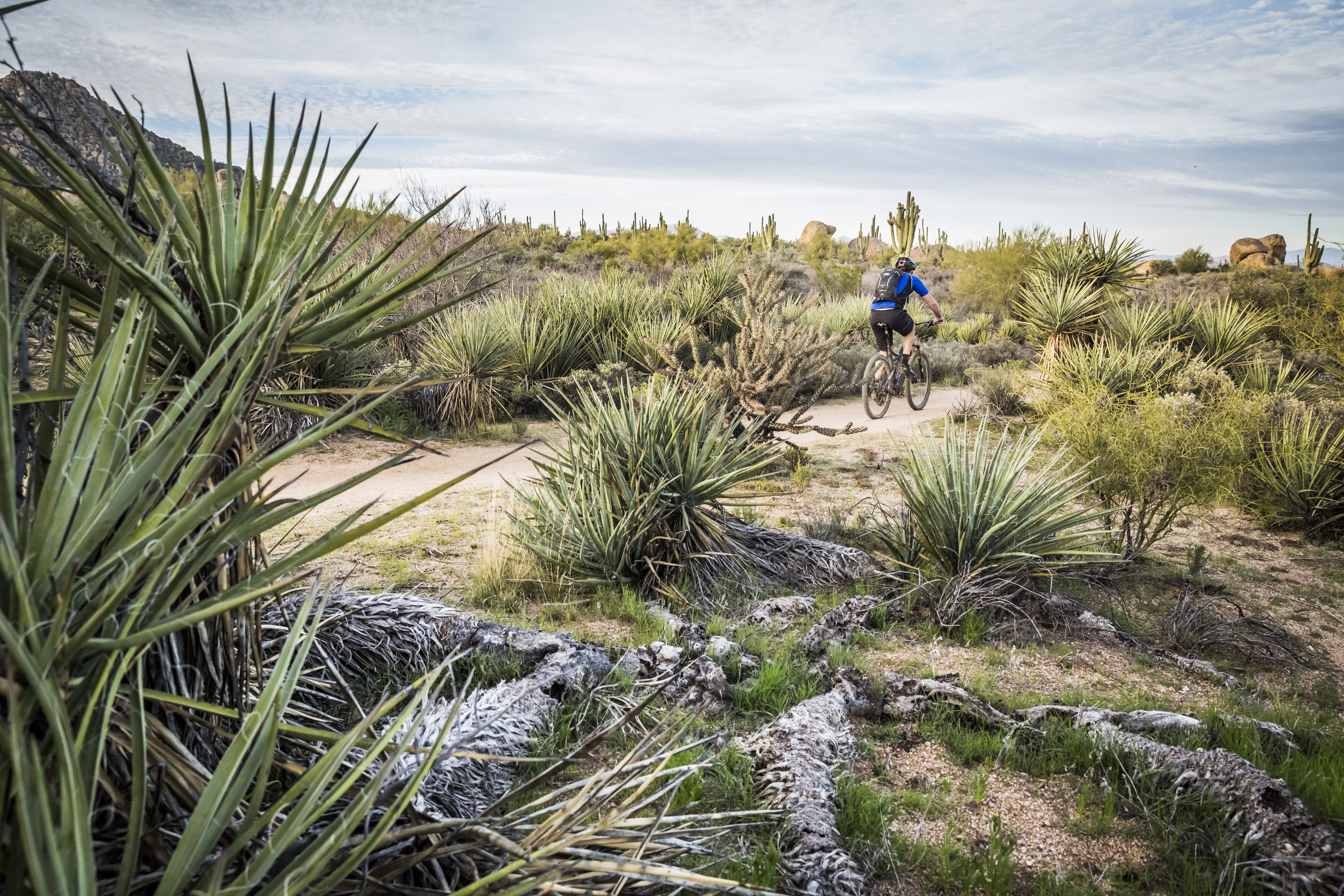 10 Must-Ride Mountain Bike Trails in the US - Osprey Packs Experience