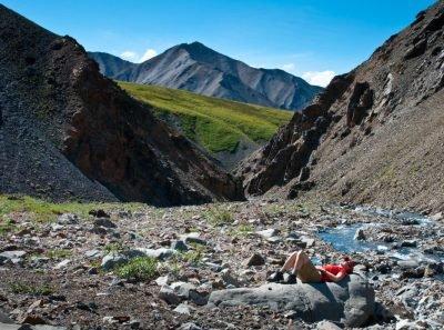 20170621_Alaska_Denali National Park_Mt Eielson Loop_Wolverine Creek